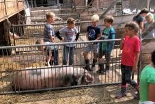 Klassenfahrt Bauernhof 2019  (3) (640x480)