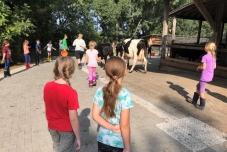 Klassenfahrt Bauernhof Bild 1.2 (640x480)